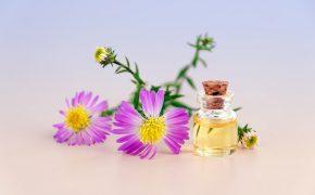 olejki z roślin w kremach przeciwtrądzikowych